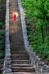 Ladder of  heaven...