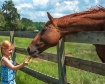 Girl Loves Horse
