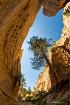 canyon at tent ro...