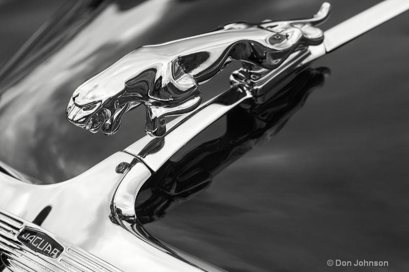 B&W Jaguar Logo - ID: 14163802 © Don Johnson