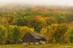 Autumn's Arri...