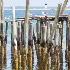 © Beth E. Higgins PhotoID# 14245213: Long Point Light - Provincetown