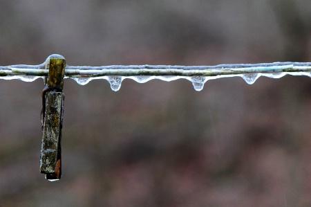 Frozen Line