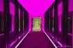 Pink Hotel Dreams