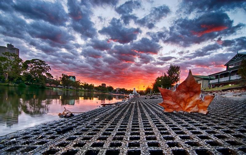 A Melbourne Dawn