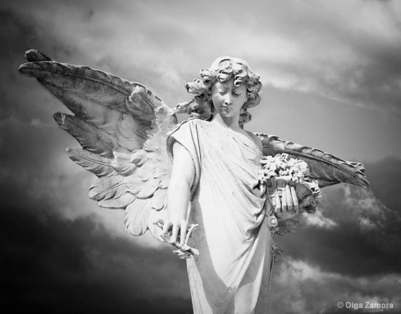 Angel Flowers - ID: 14333735 © Olga Zamora