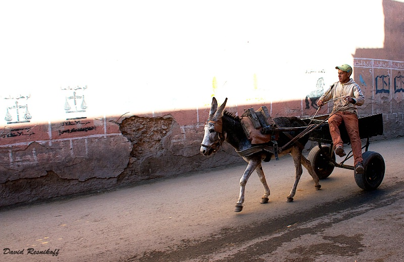 Marrakech Side street - ID: 14348431 © David Resnikoff