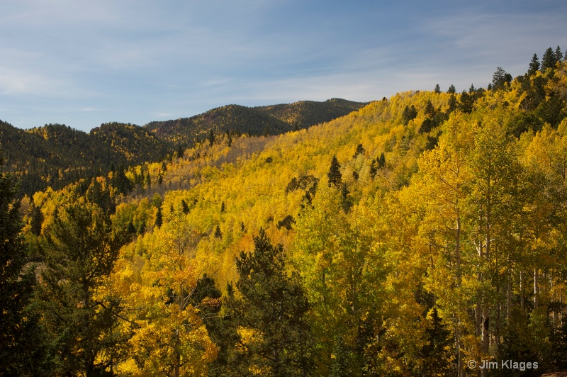 Fall Foliage Along Gold Camp Road - ID: 14352530 © Jim Klages