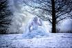 Icebound Fortitud...
