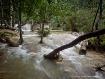 Lower Falls - Lao...