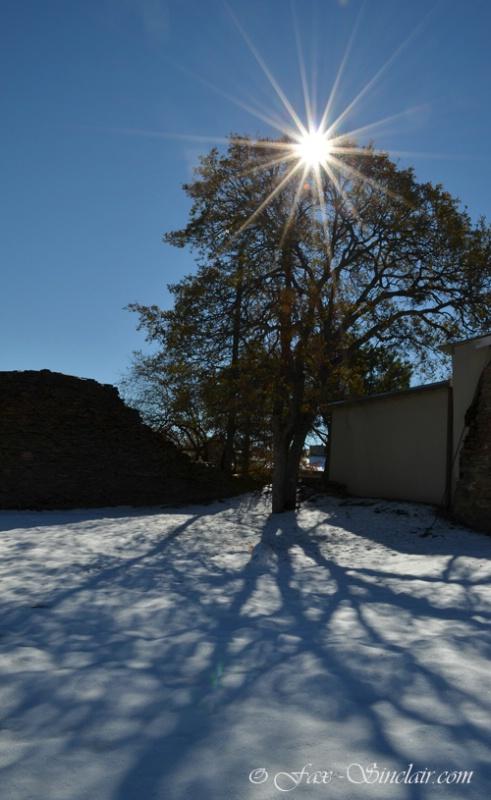 snow day sm - ID: 14422915 © Fax Sinclair