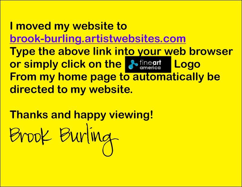 www.brook-burling.artistwebsite.com