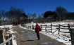 Winter In The Vil...