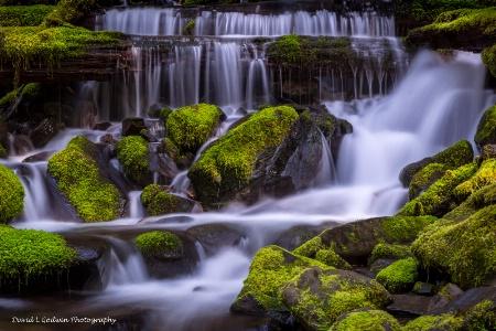 Creek near Sol Duc Falls