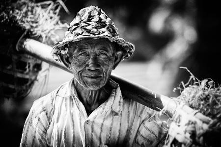 Bali farmer