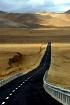 On way Manash Sar...