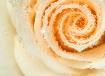 Rose and Raindrop...
