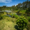 Nature Reserve, B...