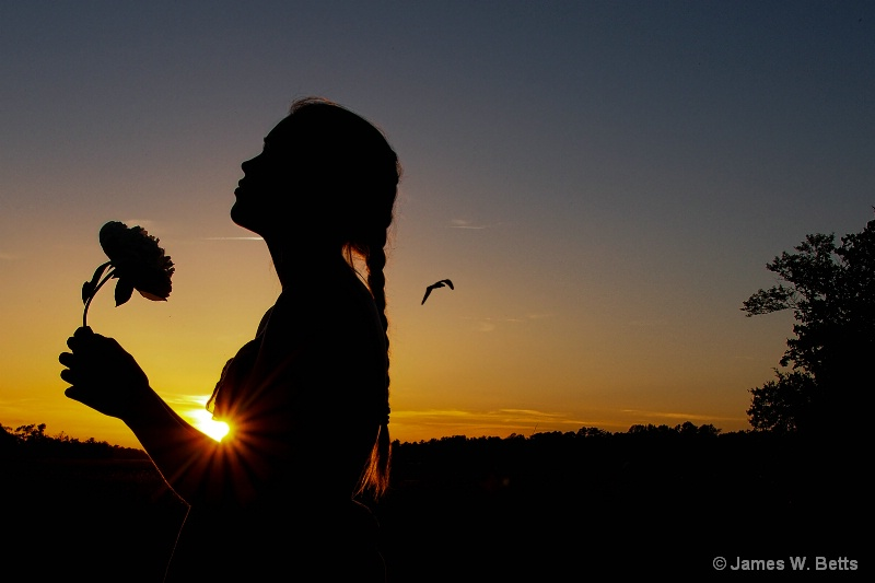 Felicia Sunset...