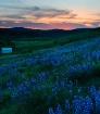 Kittitas Valley S...