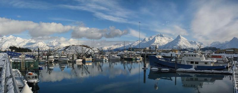 Valdez Winter Harbor Pan - ID: 14579720 © Gary H. Minish
