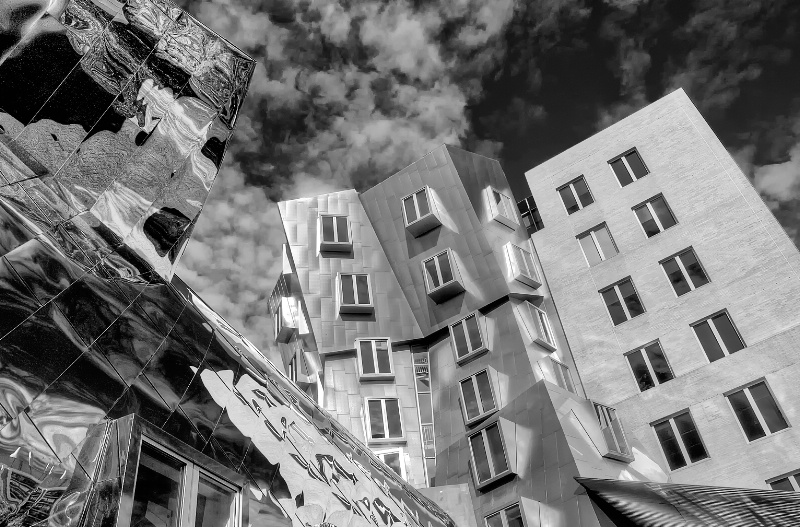 Stata Center in Black and White
