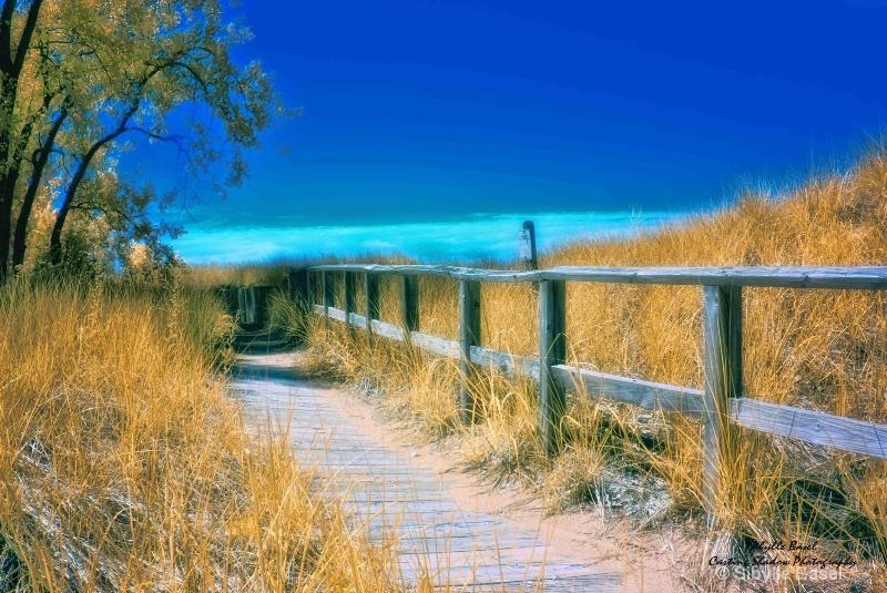 Beach walk - ID: 14586965 © Sibylle Basel