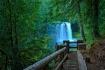 Koosah Falls, Ore...