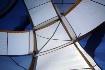 The-Big-Blue-Tent