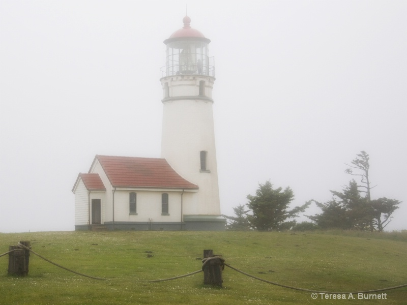 Cape Blanco In Fog - ID: 14612620 © Teresa Burnett