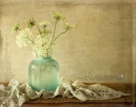 Blue Vase - White Lace
