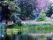 Monet in the Gard...