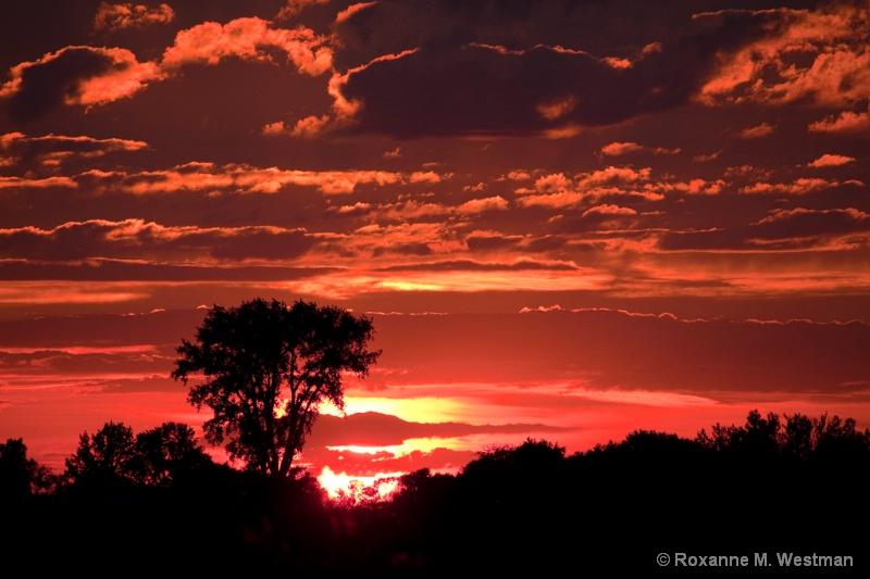 North Dakota Sunset - ID: 14642440 © Roxanne M. Westman
