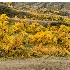 © Jim D. Knelson PhotoID # 14674707: Saskatchewan Landing Coulee