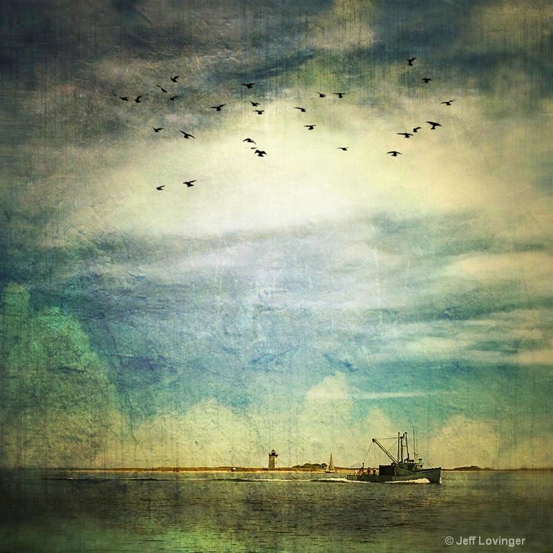 Cape Cod Bay #362 - ID: 14683411 © Jeff Lovinger