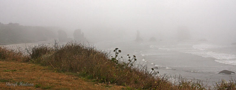 Fog Along the Oregon Coast - ID: 14718352 © Sheryl A. Hudson
