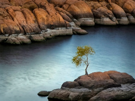 Photography Contest Grand Prize Winner - November 2014: From a Distance