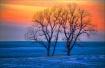 ~ A WINTER SUNSET...