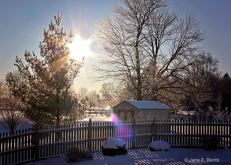 Cold Sunburst - ID: 14762467 © Jane E. Bentz