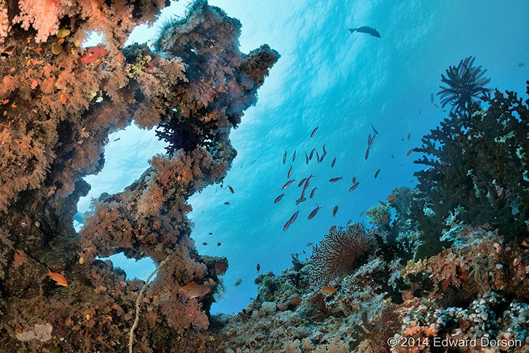 Bligh Water Seascape - ID: 14776858 © Edward Dorson