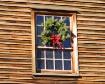Christmas at the ...