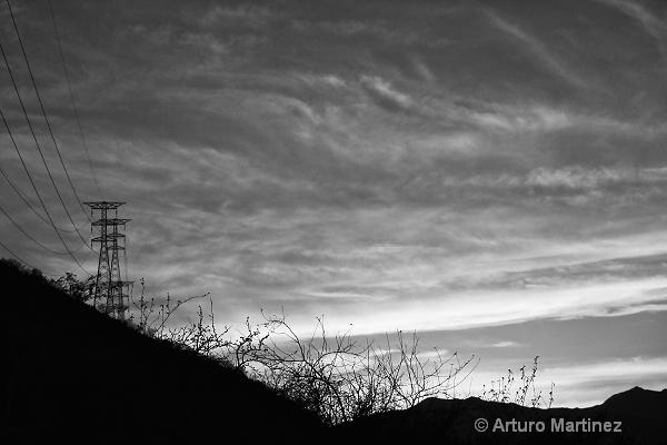 - ID: 14786678 © Arturo Martinez