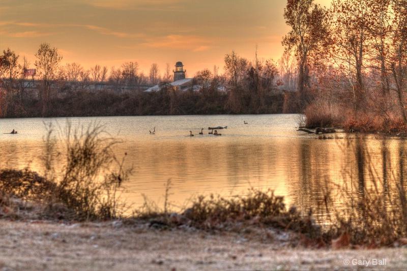 Canada Geese on Arkansas River