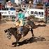 © Wendy Kaveney PhotoID # 14821319: Bucking Bronco - Bronc Riding
