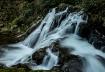 Beaver Creek Fall...