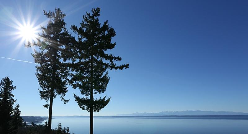 Sunny Blue Skies - ID: 14839994 © Janine Russell