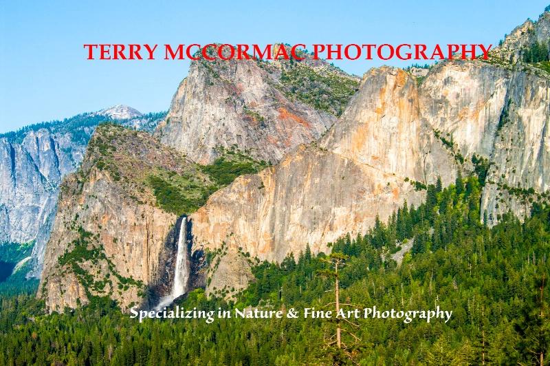 - ID: 14866846 © TERRY N. MCCORMAC