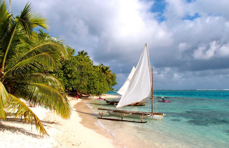 <p>* Life on Mystery Island *<p>