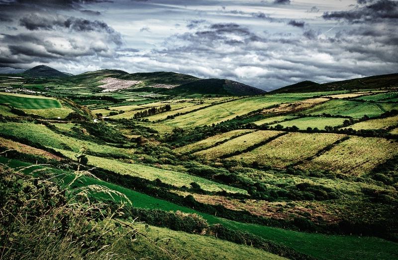 Irish Fields - ID: 14909063 © David Resnikoff