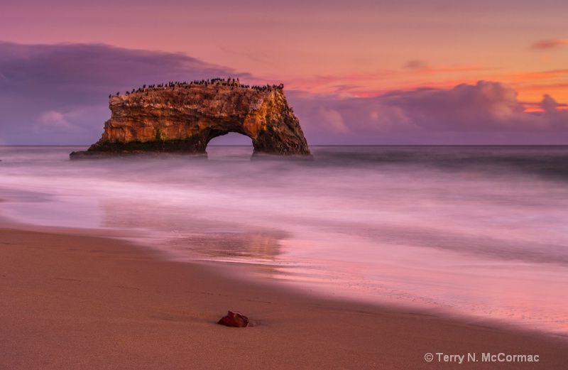 Natural Bridges State Beach - ID: 14918717 © TERRY N. MCCORMAC